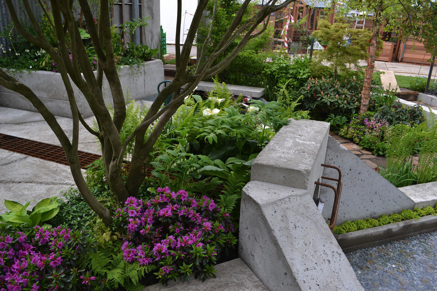 RHS Chelsea Flower Show 2013 - The Wasteland